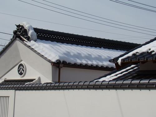 2008_10290060.JPG